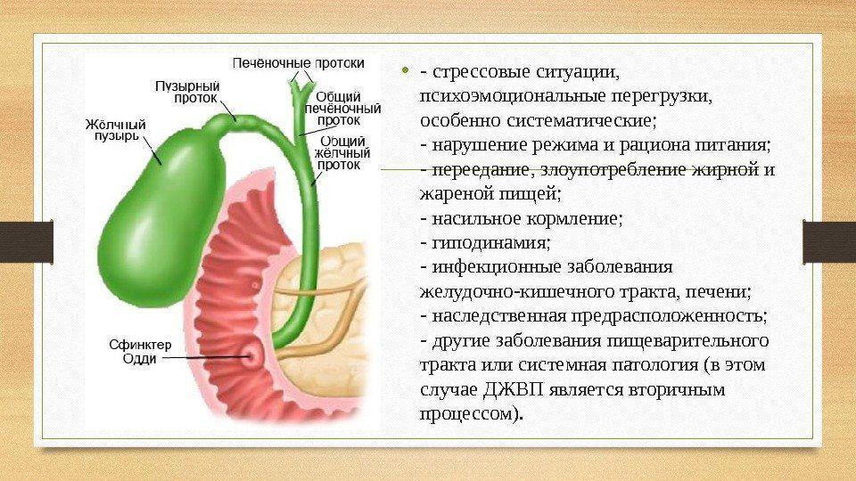 Дистония толстой кишки по гипертоническому типу ...